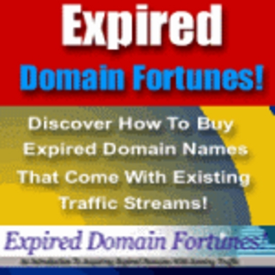 Product picture Expired Domain Fortunes-make more money